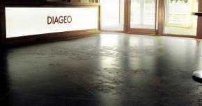 Diageo Interim Results
