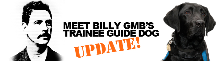 Billy GMB's Trainee Guide Dog - Update 2019